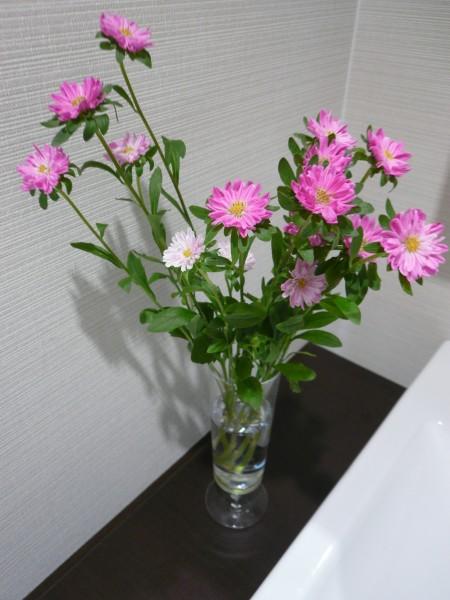 7.14花